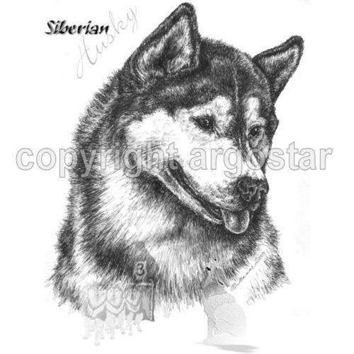 T Shirt Siberian Husky Arctic Ghosts Argostar Dog Art