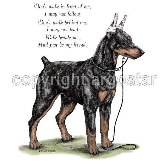 DOBERMAN PINSCHER DOG ADVERT ON GREETINGS NOTE CARD