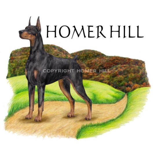 Homer Hill logo - Style: colored pencil