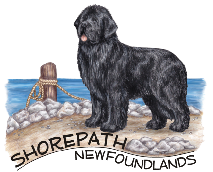 shorepathlogo.png
