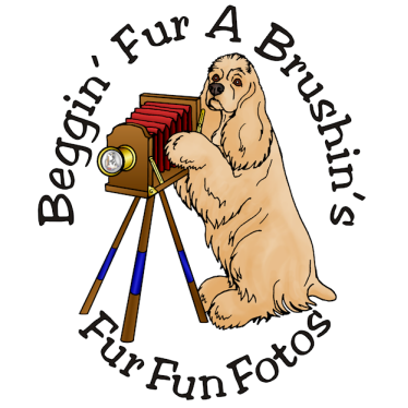 Fur Fun Fotos Logo