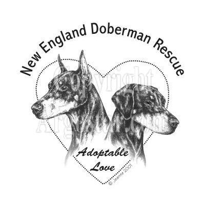 New England Doberman Rescue Logo