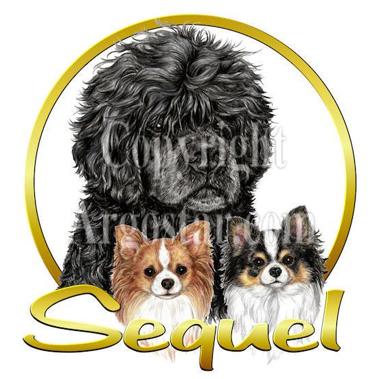 Sequel Portuguese Water Dogs and Chihuahuas Logo