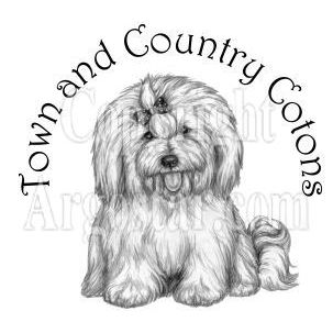 Town and Country Contons Logo