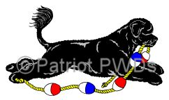 Patriot Portuguese Water Dog Spot Illustration