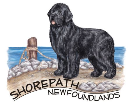 Shorepath Newfoundlands Logo