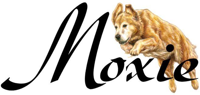 Moxie - Golden Retriever Logo