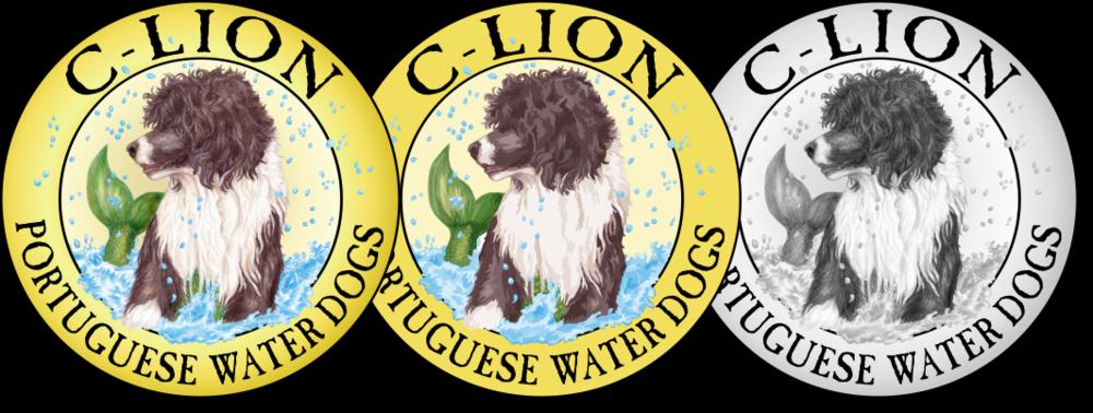 c-lion-pwd-logo