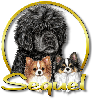 sequel-logo