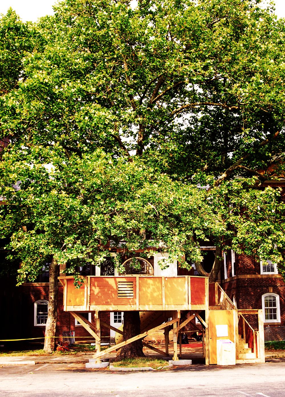 Treehouse6.jpg