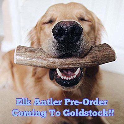 ElkAntlerPreOrder-2.jpg
