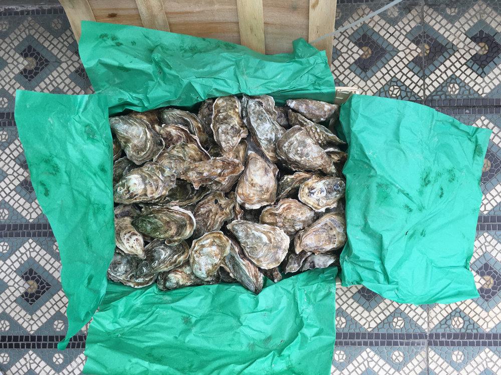Soiree Austern.jpg