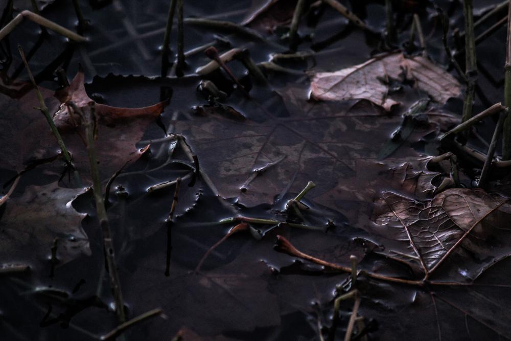 lakewater (1 of 1).jpg