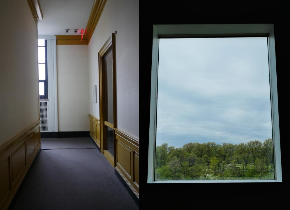 nyctiffs-7brooklyn windows.png