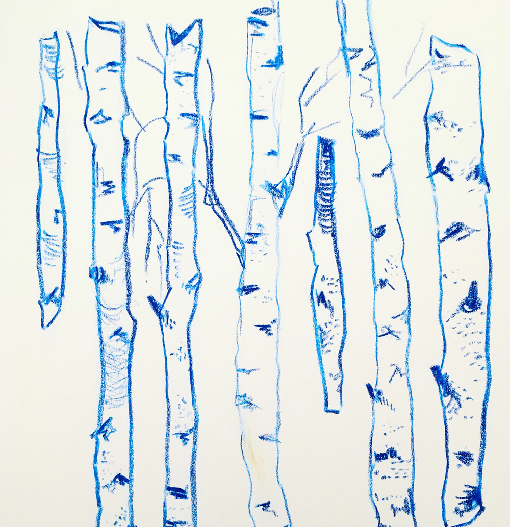 By exaggerating the subtle differences I saw between the birch tree trunks, I made them feel more individual.
