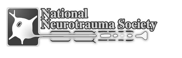 NNS Logo.png