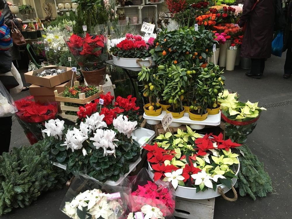 Christmas flower stall