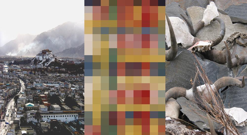 Lhasa-horns 4.jpg