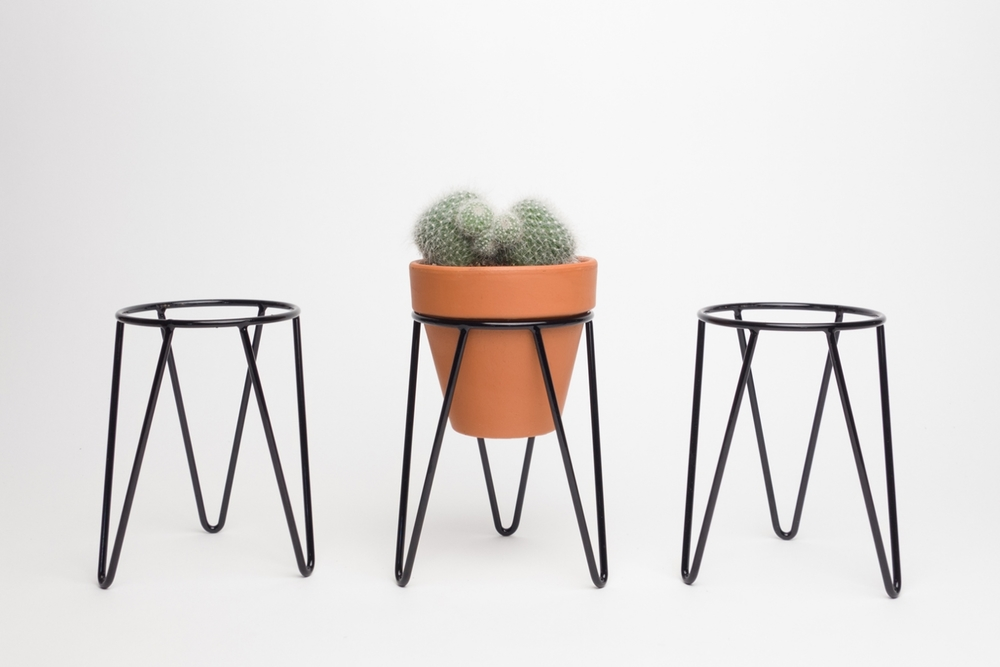 Mini Hairpin Wire Plant Stands and Terracotta Pot with Mammillaria Cactus