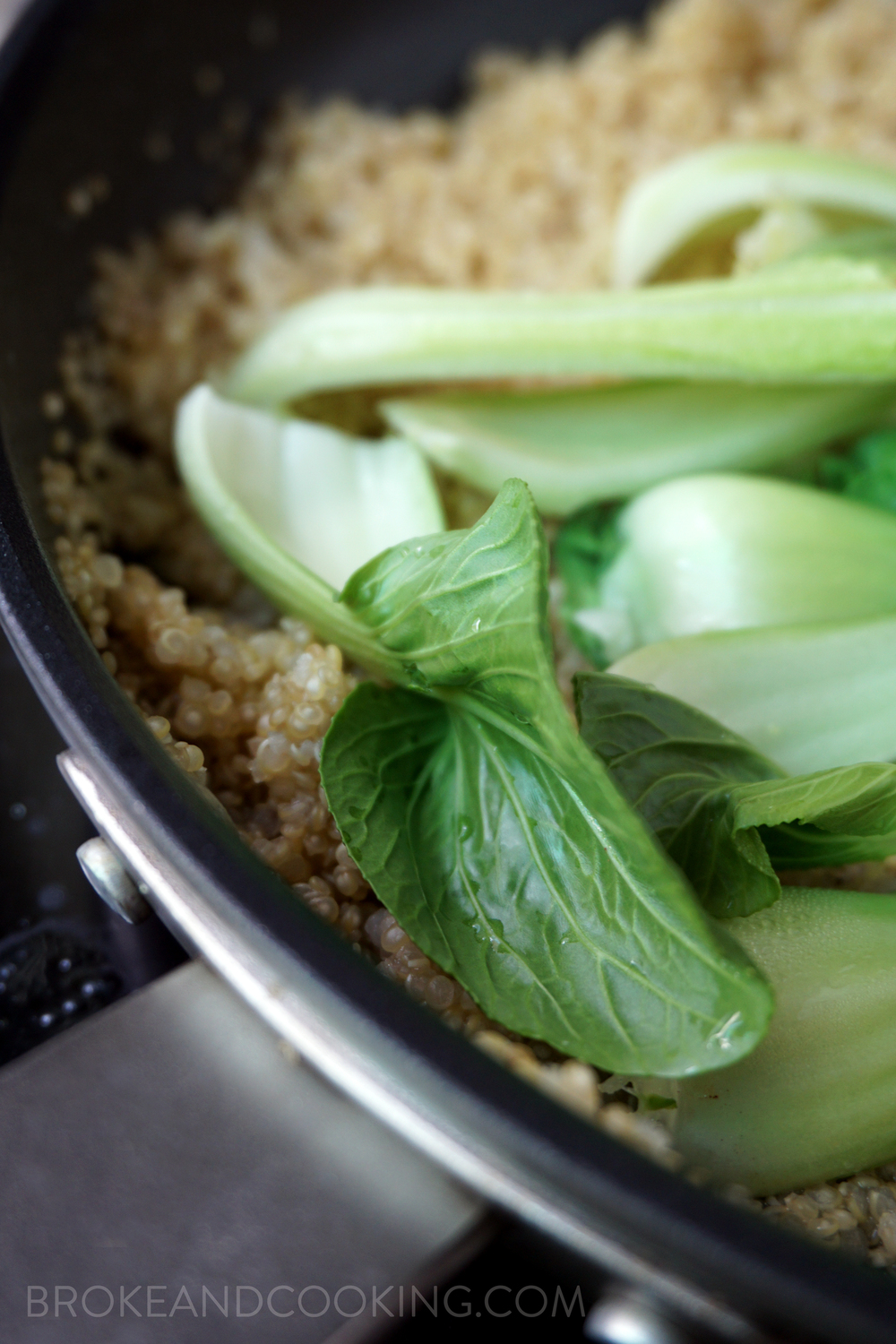 2 Of The Sliced Jalape�o, And Half Of The Green  Onions To The Quinoa Cover And Allow The Bok Choy To Wilt