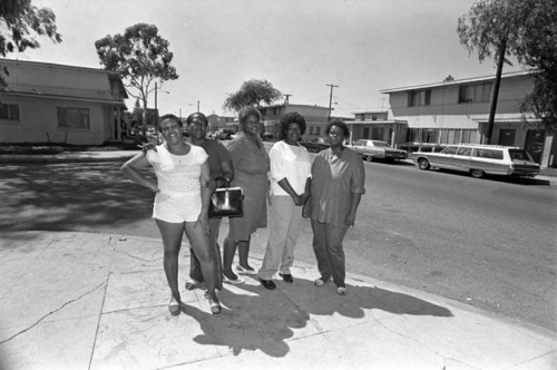 Nickerson Gardens Housing Project, 1979. UCLA, Charles E. Young Research Library, Department of Special Collections, Los Angeles Times Photographic Archive