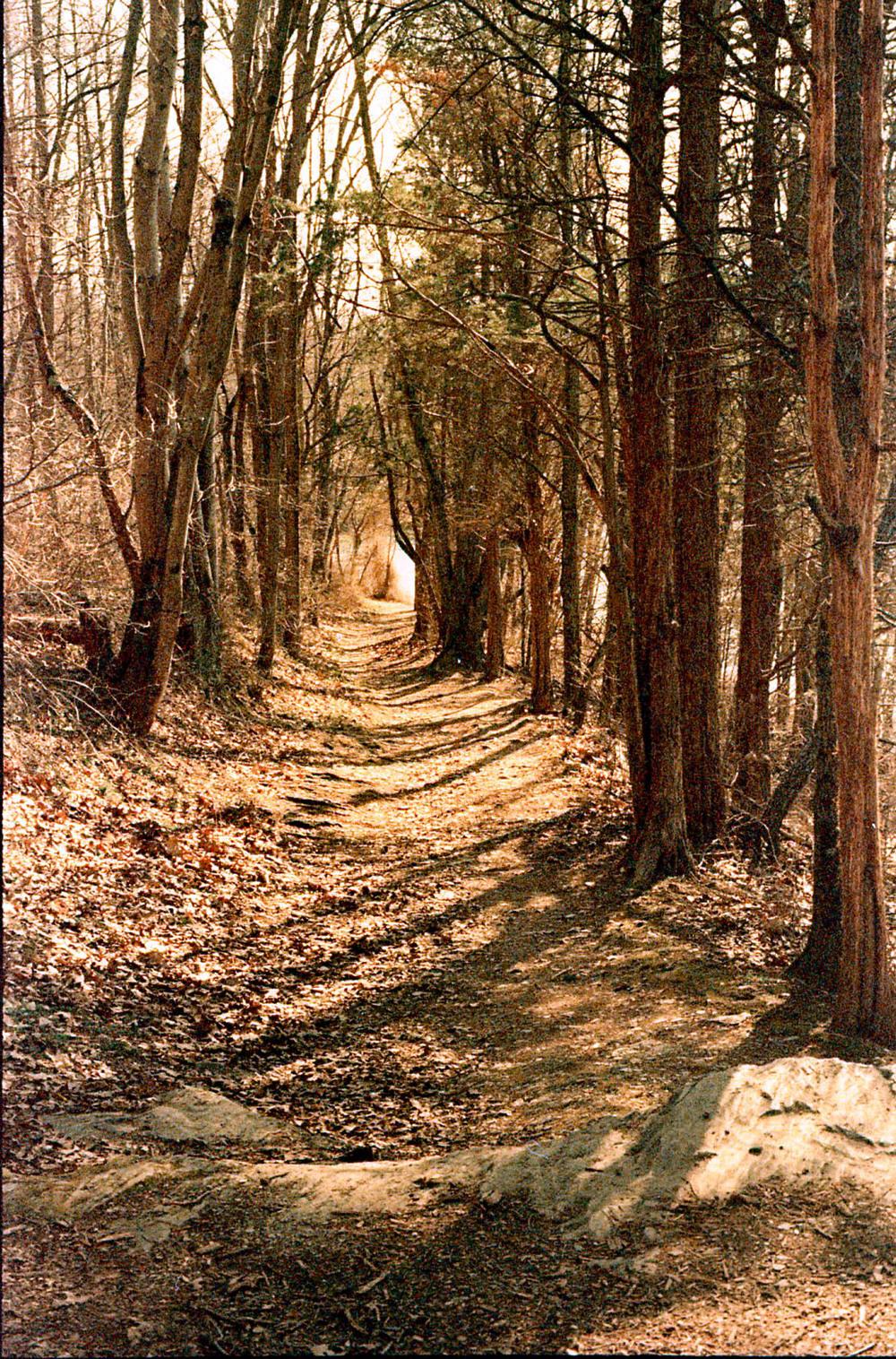 la-ho_trail.jpg