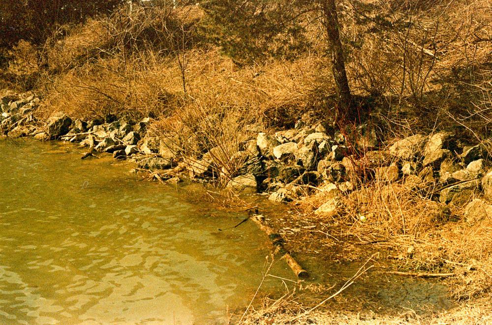 rocks_water.jpg