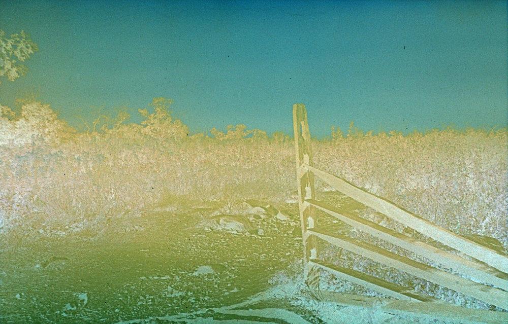 fence_landscape.jpg