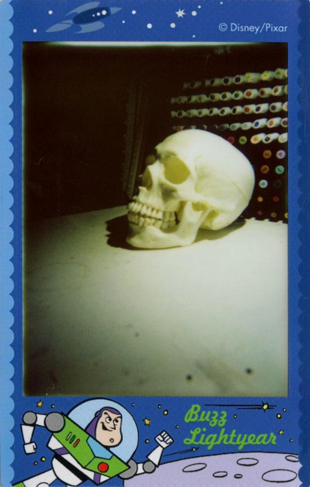 skull_sideview.jpg