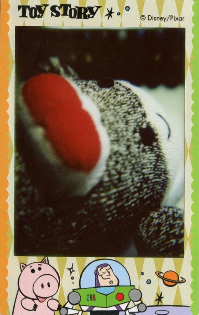 sock_monkey_portrait.jpg