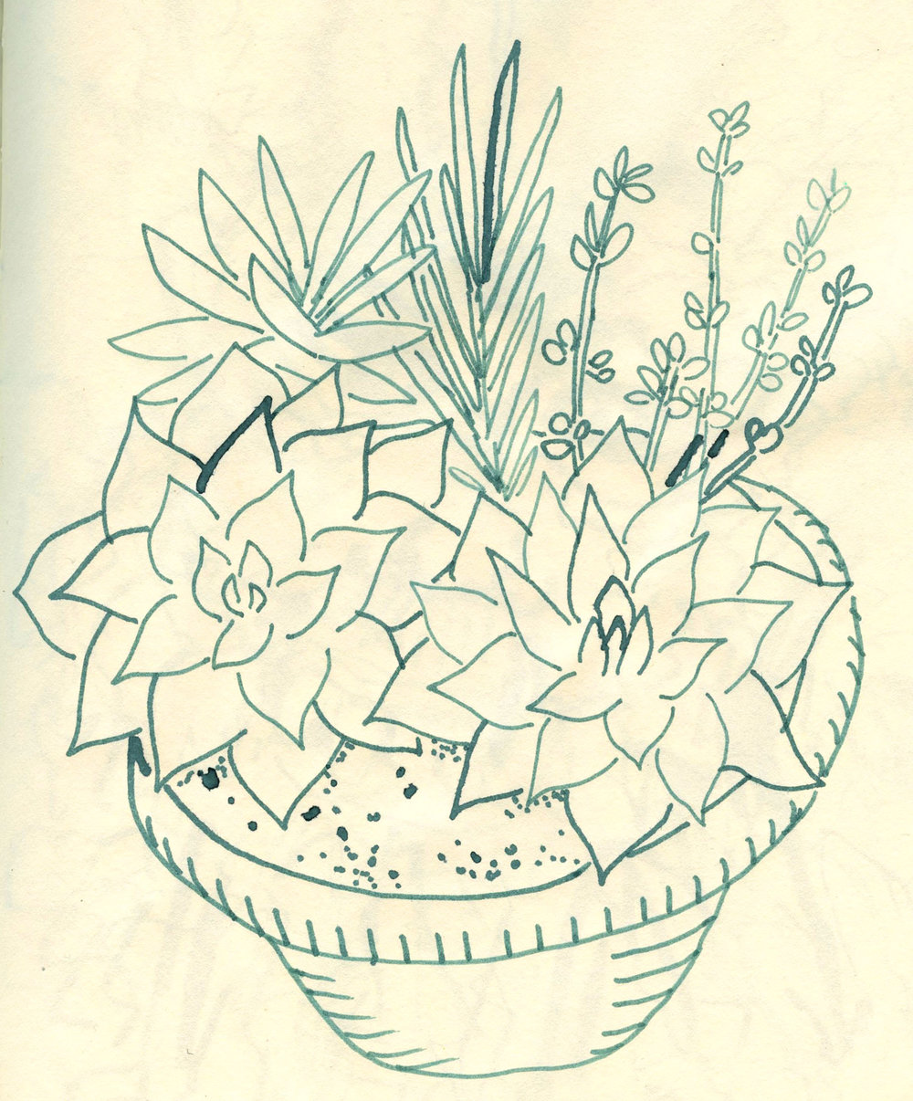 plant_bamboo_pen.jpg
