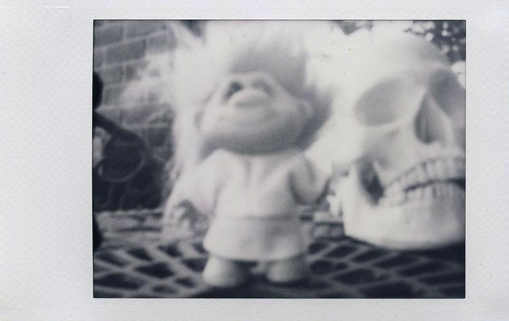 troll_skull_without_pinhole_lens.jpg