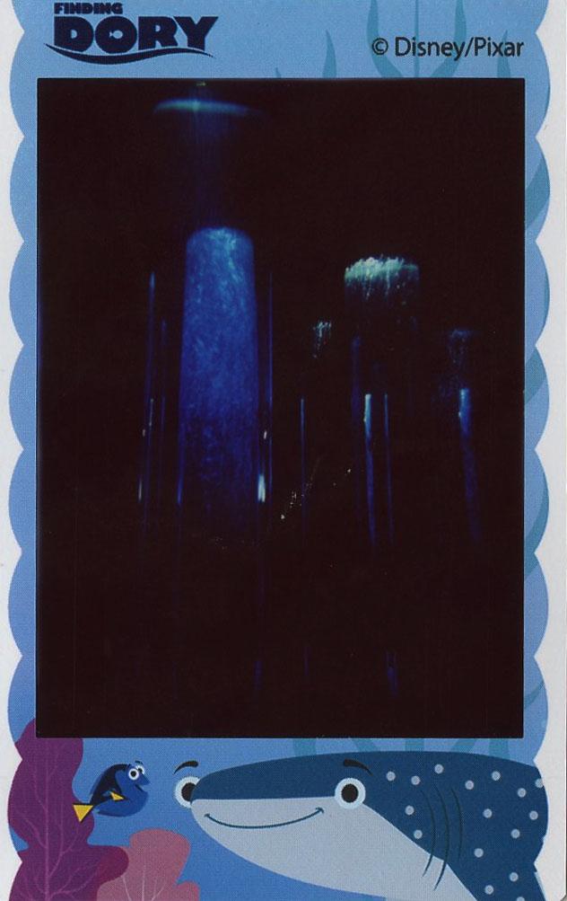 aquarium_tubes.jpg