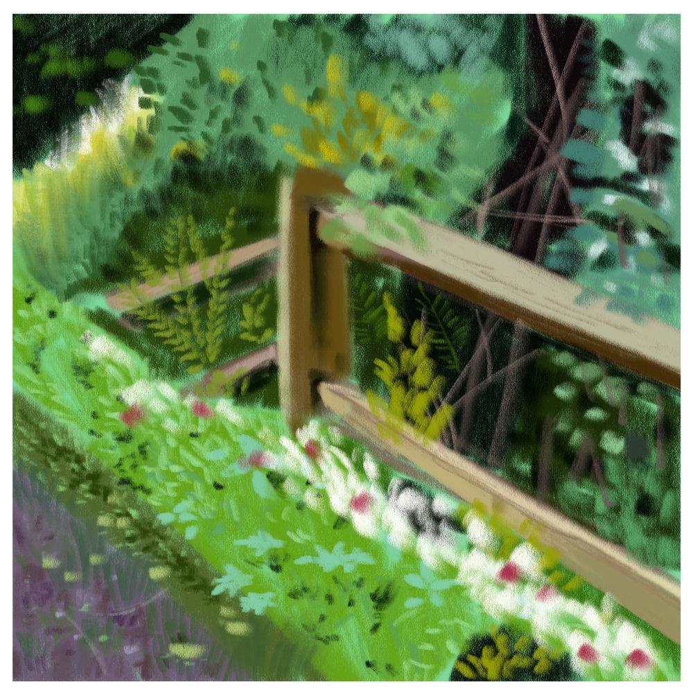 #3_-_Grassy_Fence.jpg