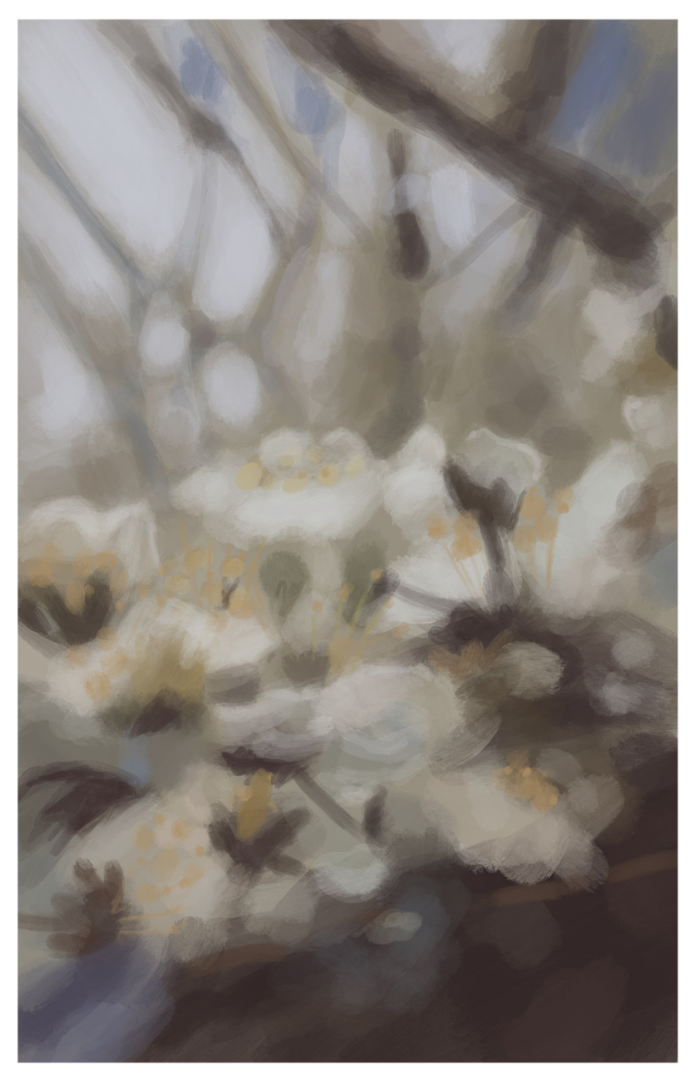 #7_-_White_Blossoms.jpg