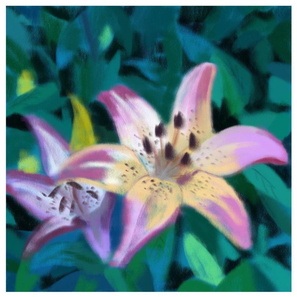 #6_-_Lilies.jpg