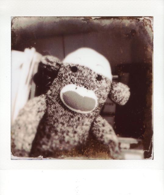 sock_monkey_tintype_amber (1).JPG
