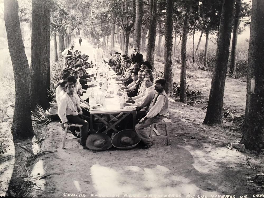 Comida a los Jardineros de losViveros de Coyoacan, Mexico City,1925.
