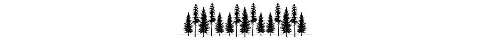 trees_banner2.jpg