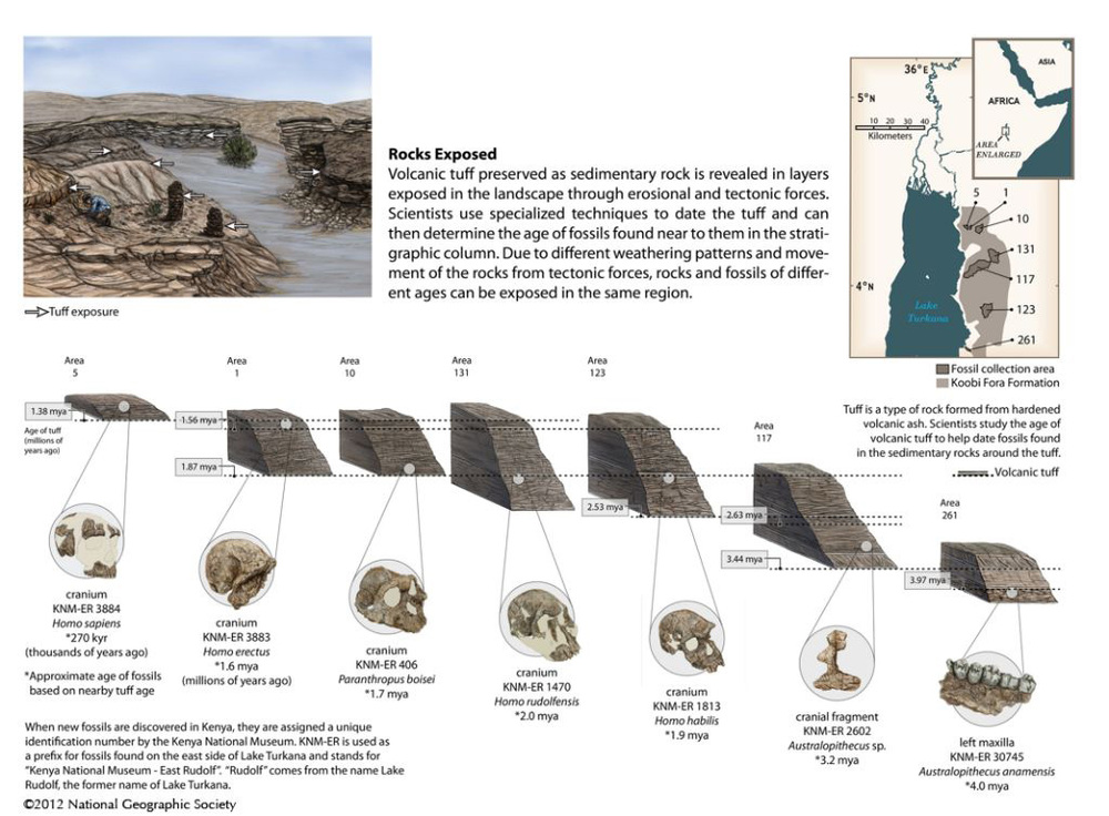 National Geographic Education: Dating Fossils in the Rocks