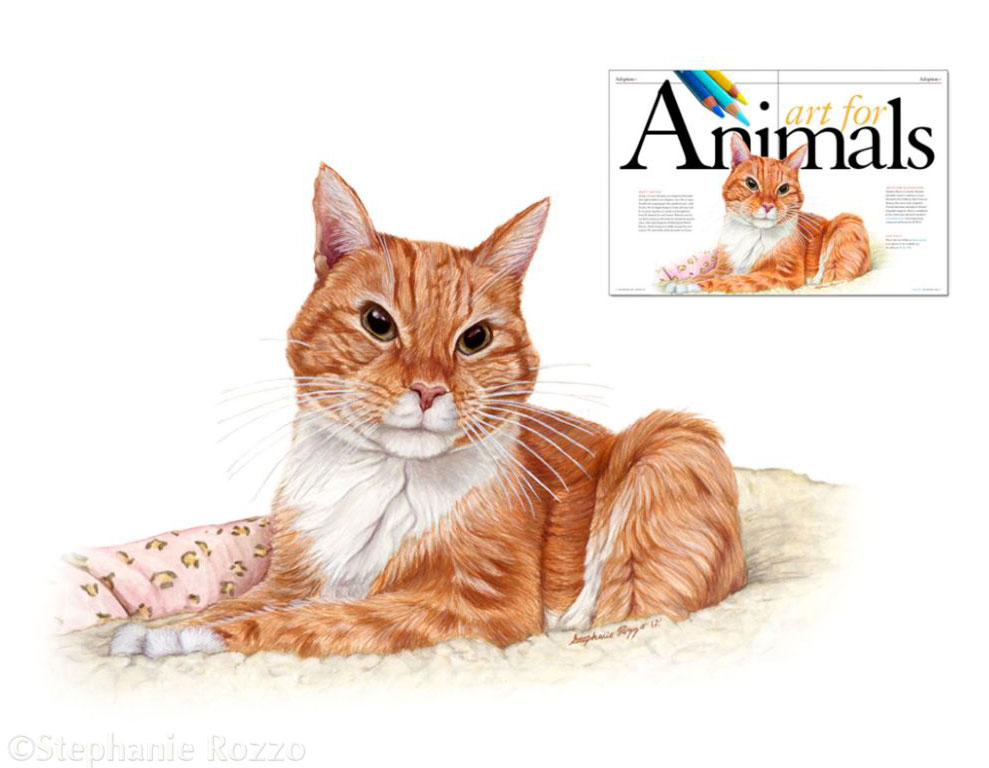 Art For Animals Portrait Spread for SF SPCA publication