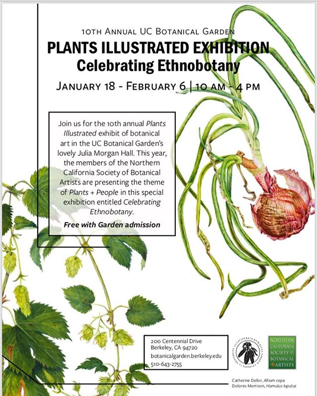 View gorgeous Botanical Illustrations created by the Northern CA Society of Botanical Artist. Look out for my original watercolor painting of a Saguaro Cactus. The theme of this years show is Ethnobotany: the study of the complex relationship between plants and people across space and time.  Admission to the exhibit is free with Garden Admission.  more info: http://events.berkeley.edu/index.php/calendar/sn/bot.html?event_ID=121919&date=2019-01-18&filter=Event+Type&filtersel&fbclid=IwAR3wERfcK8DKarBgpZodoONpT3sQy_mnyhbXs_yMhCu6PE8OuoyXqBijRNQ
