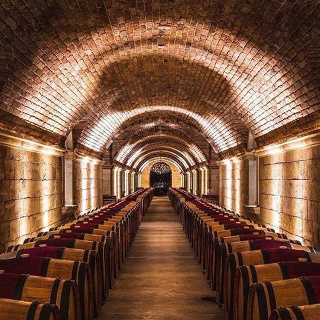 Where the magic happens 🍷 💫 #wine #barrels #winebarrel #vino #cellar #winecellar #magic #oak #wineoclock #redredwine #🍷