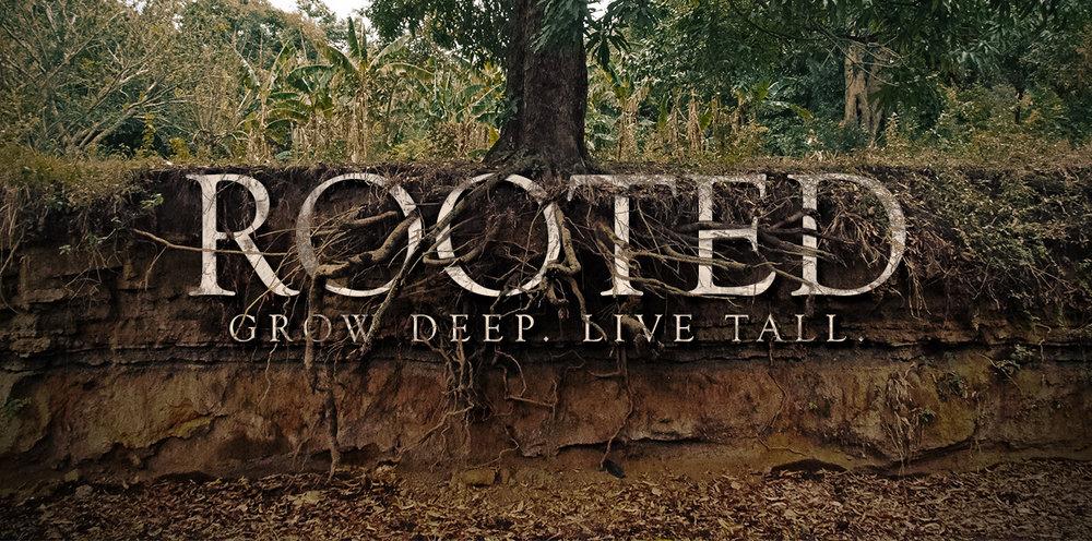 23540_Rooted_-_Grow_Deep._Live_Tall..jpg