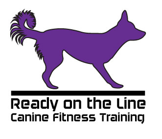 Ready on the Line - K9 Fitness Training