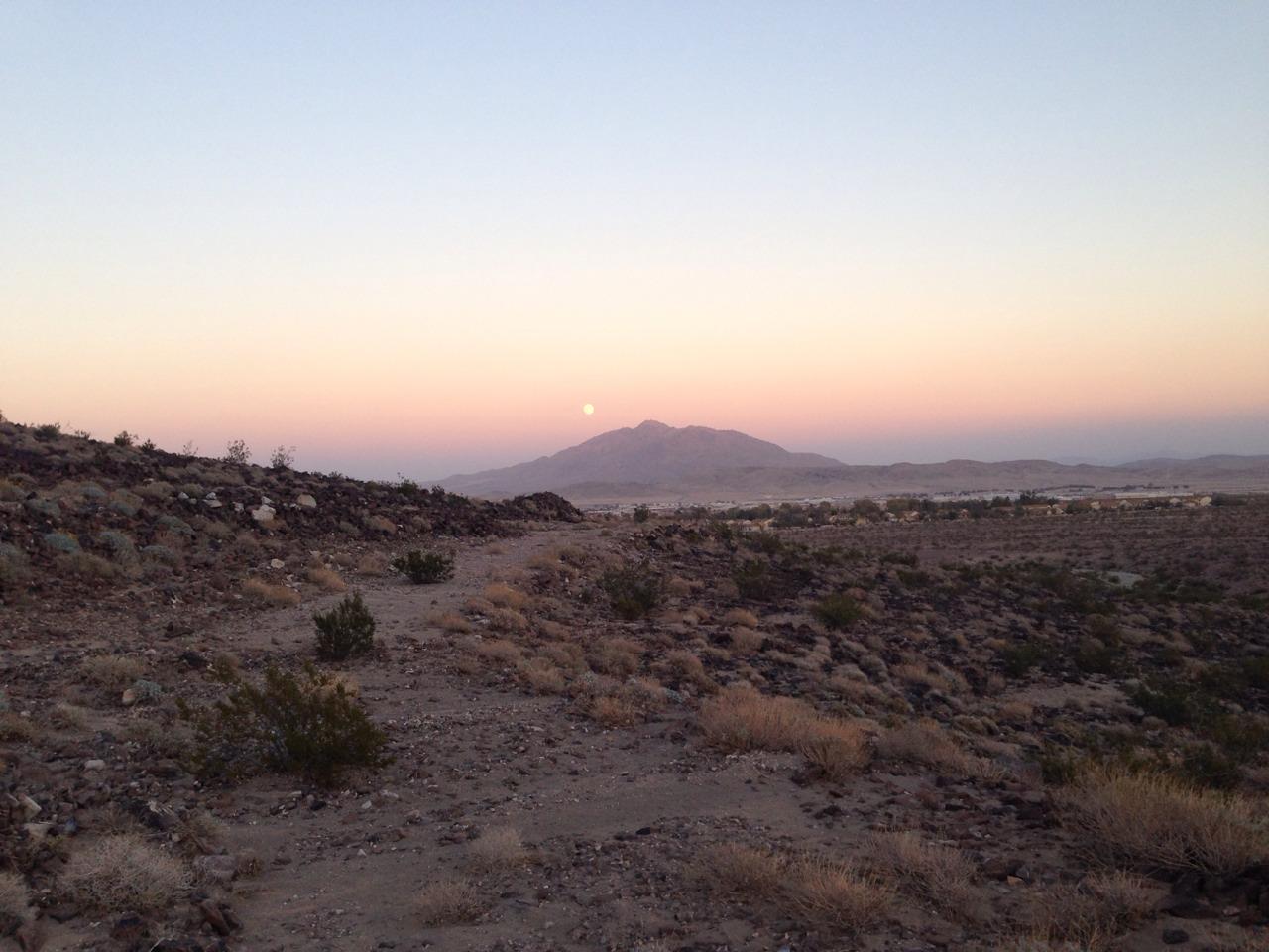 sunnyfrankenstein :     4.5 mile run across the desert yesterday