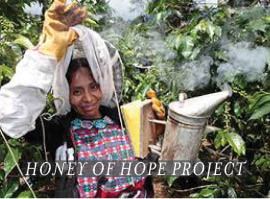 The Honey of Hope Project