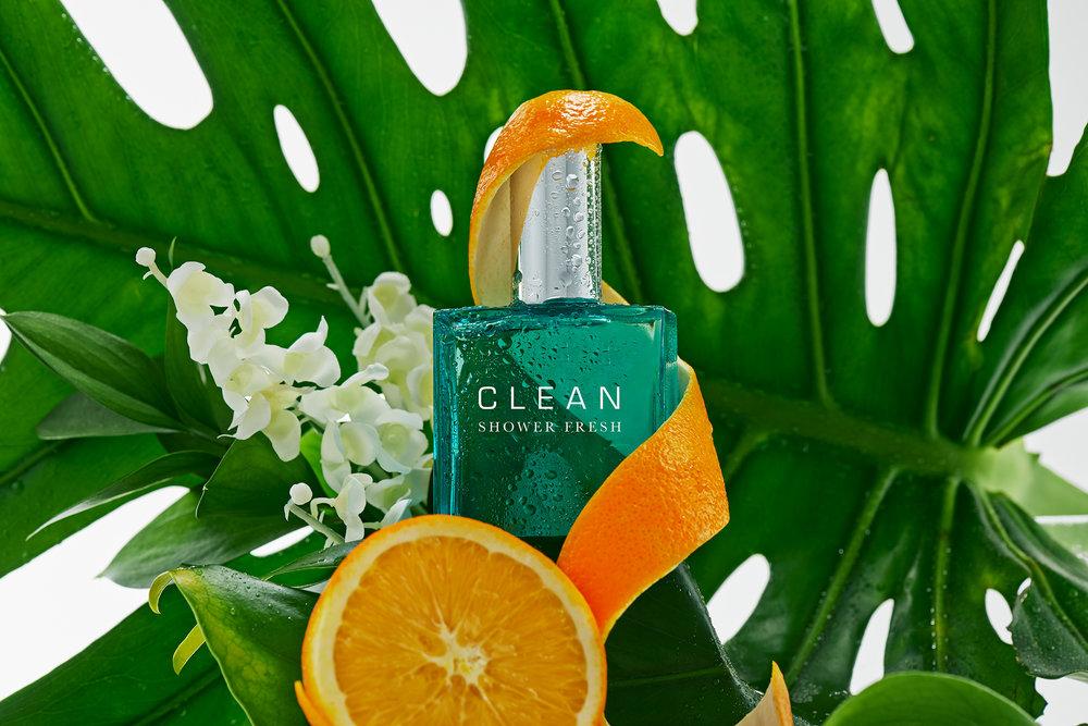 Clean Shower Fresh 2 v2.jpg