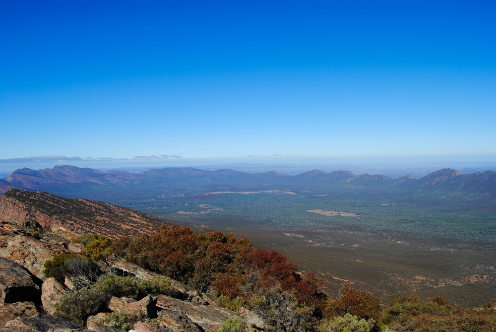 Wilpena Pound - THe View from St Mary's Peak