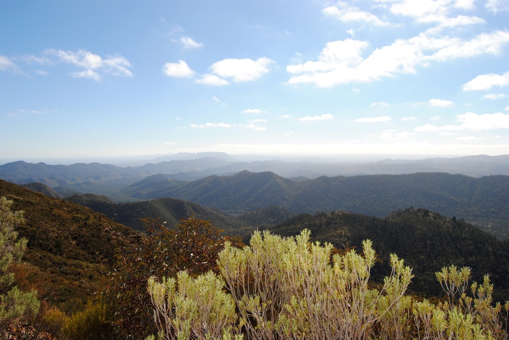 Mt Ohlssen Bagge - The View from the Trail